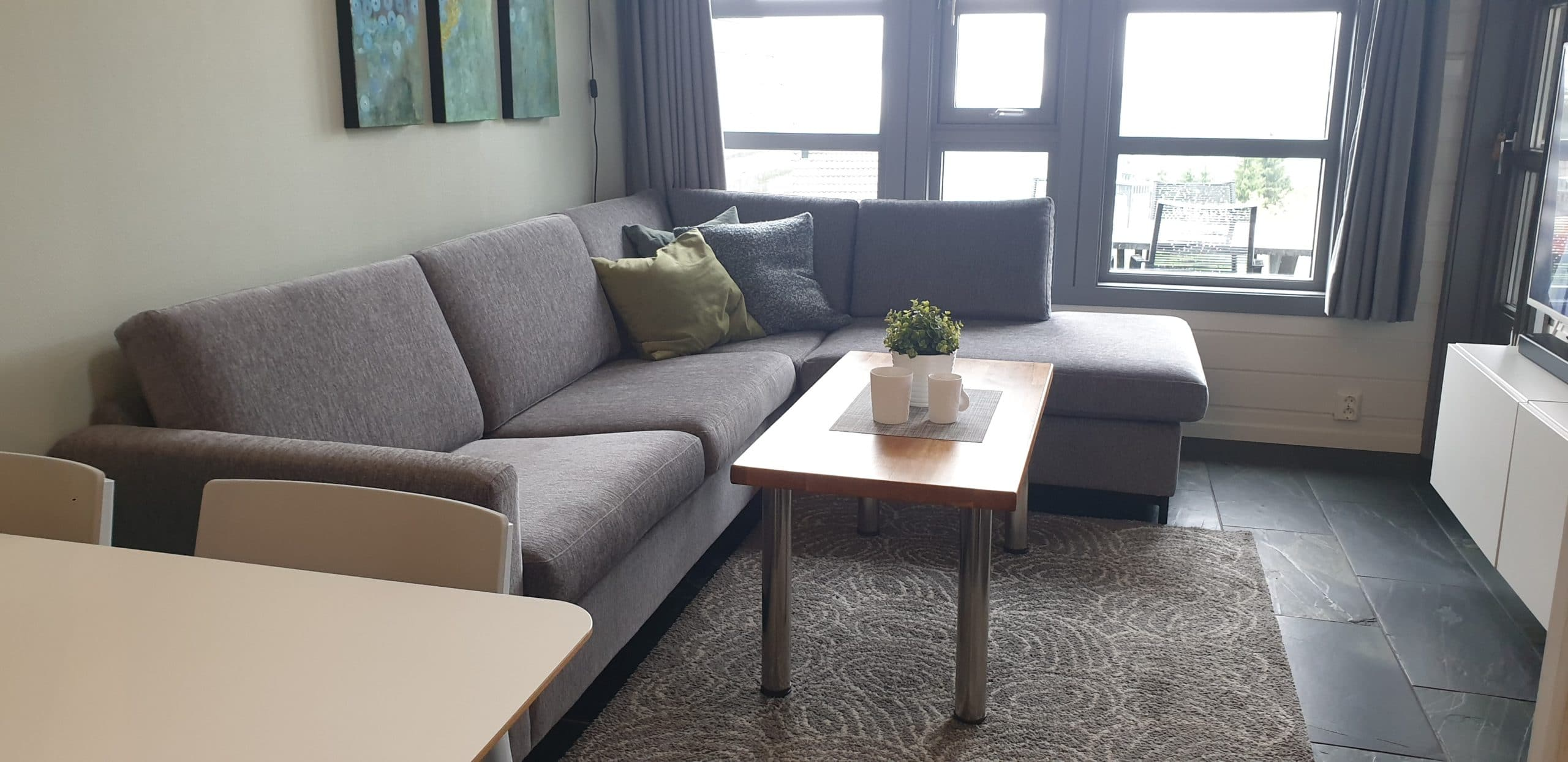 Living room seating area & view